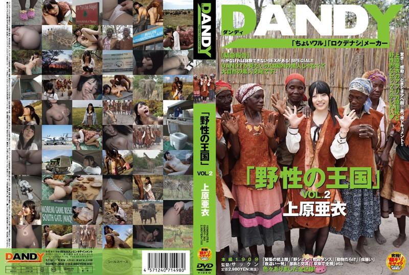 DANDY-368「野性の王国」VOL.2 上原亜衣